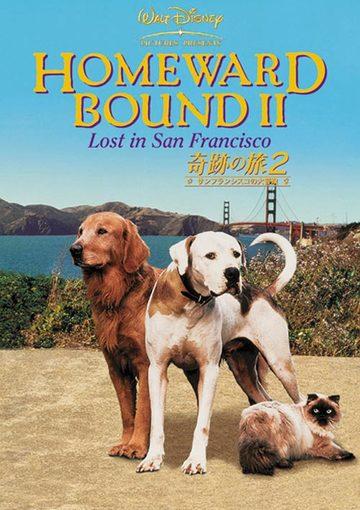 奇跡の旅2/サンフランシスコの大冒険